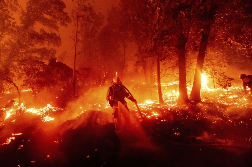 The death toll in the forest fires in the U.S. has increased to 33.