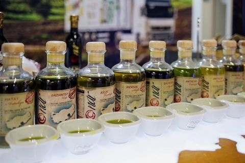 Turkish Olives and Olive Oil Are The Best in The World